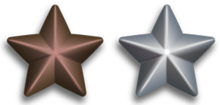 220px-silver_and_bronze_service_stars