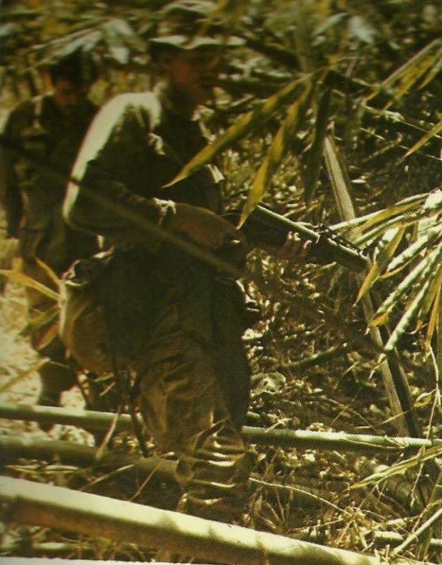 scènes de combats Patrol-bamboo