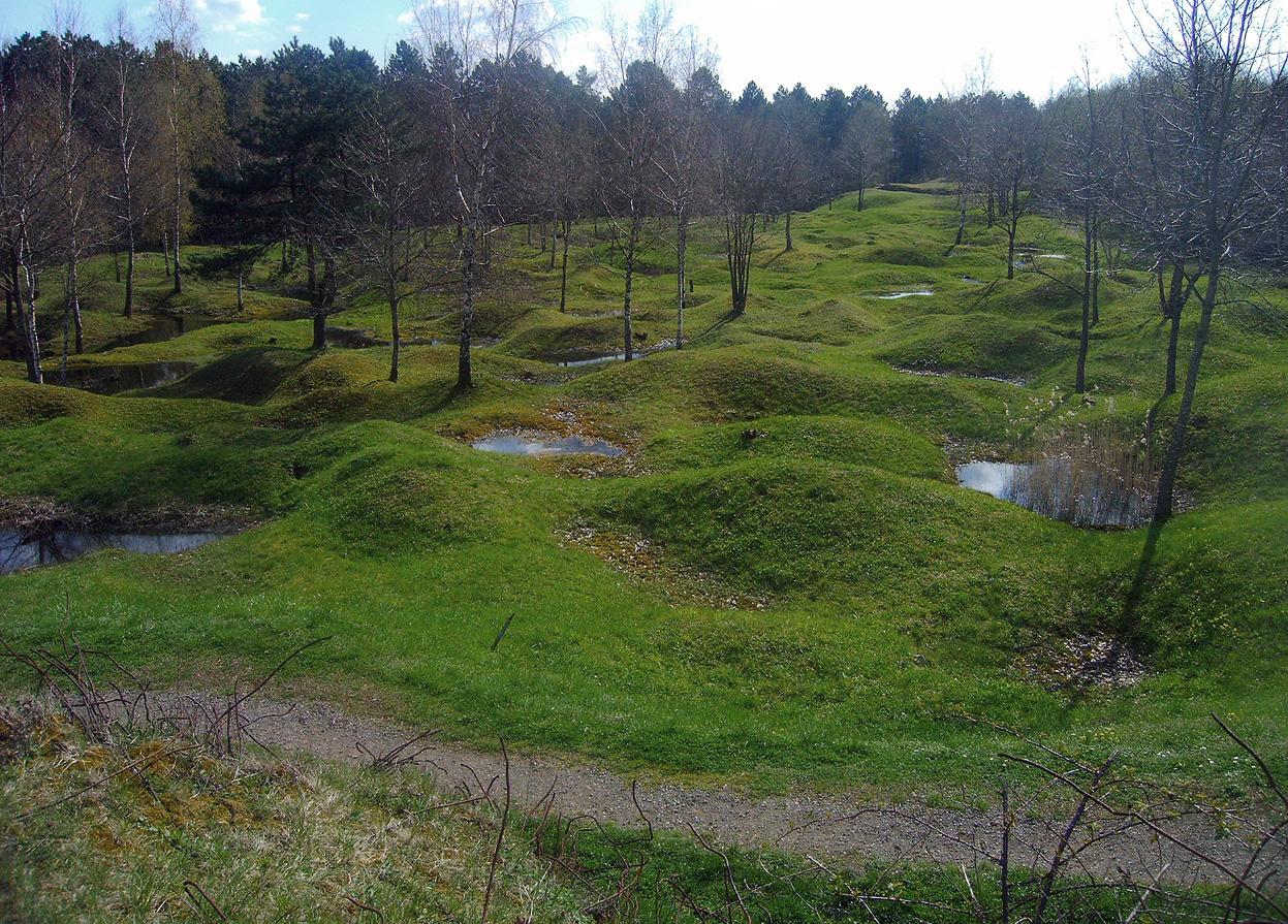 ww1 landscape memorial forest - photo #17