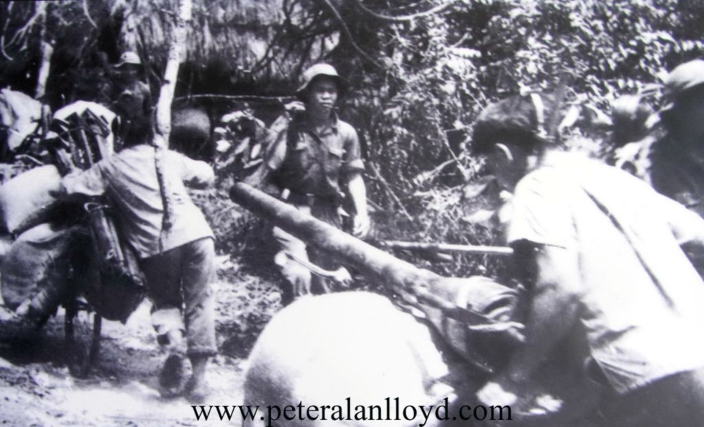 peter-alan-lloyd-back-novel-backpackers-in-danger-vietnam-war-ia-drang-valley-battle-lz-x-ray-lz-albany-north-vietnamese-army-vietnam-casu